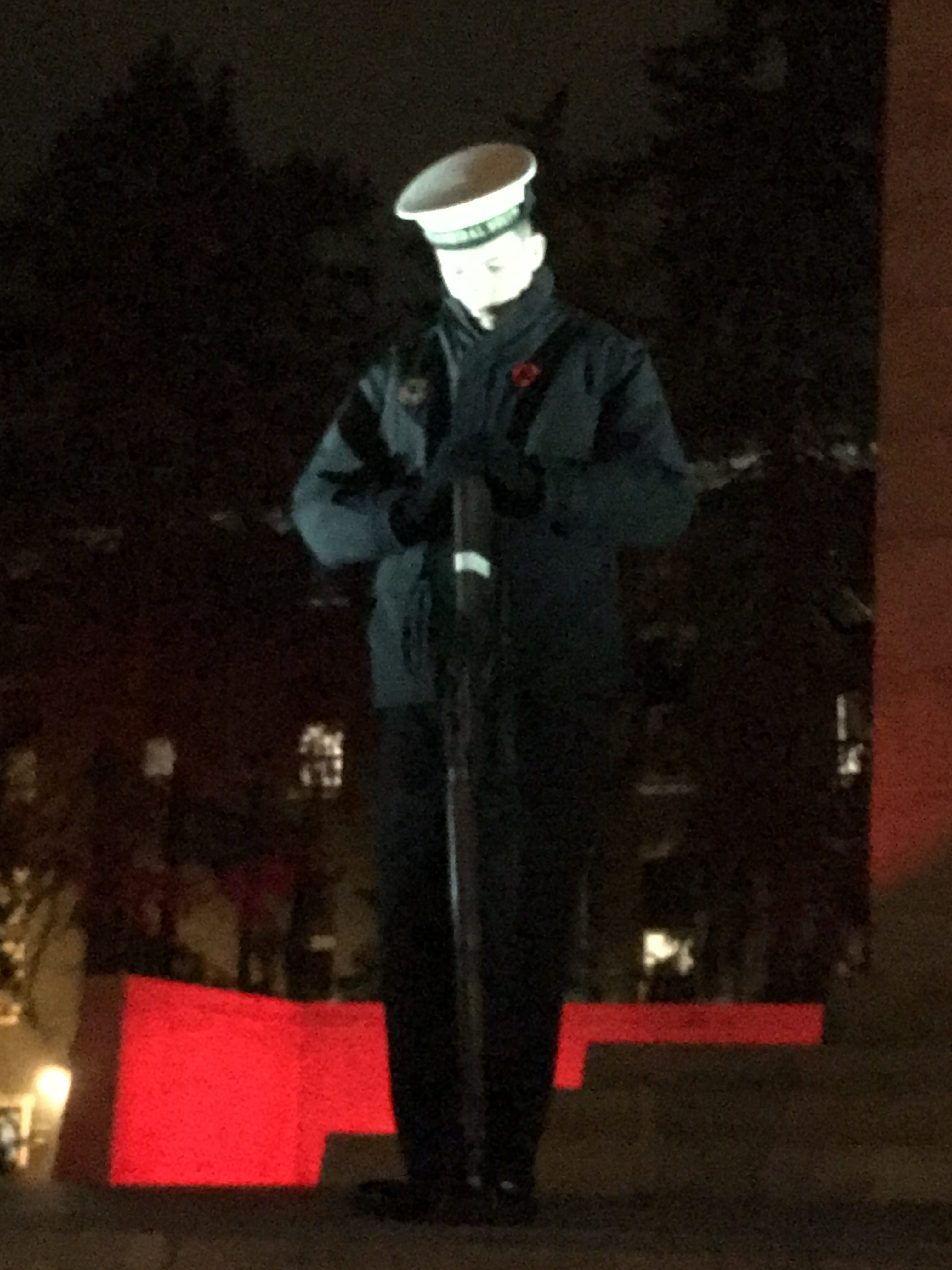 MS Downey - Stands on Cenotaph for Overnight Vigil